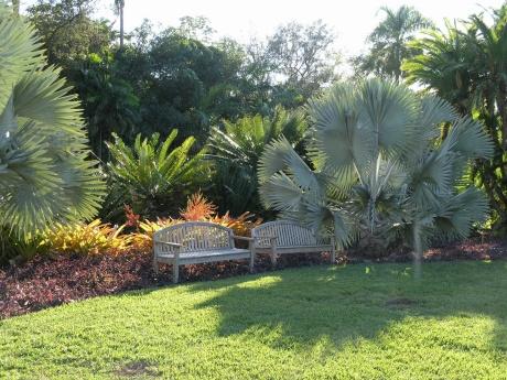 Fairchild Tropical Botanical Garden Miami Fl